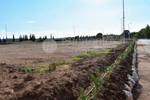 for_sale_plot_5000_square_meters_sea_view_koilada_greece (1)
