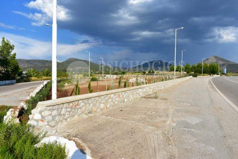 for_sale_plot_5000_square_meters_sea_view_koilada_greece (12)
