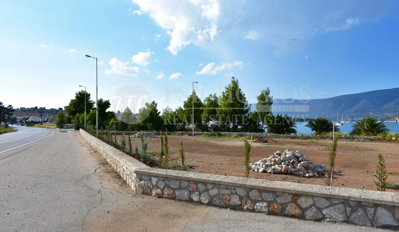 for_sale_plot_5000_square_meters_sea_view_koilada_greece (6)
