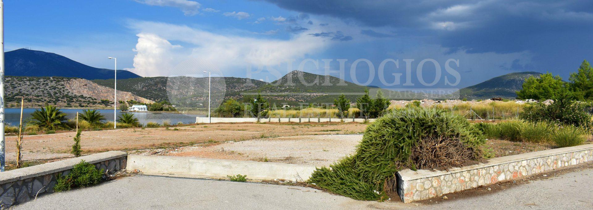 for_sale_plot_5000_square_meters_sea_view_koilada_greece (7)