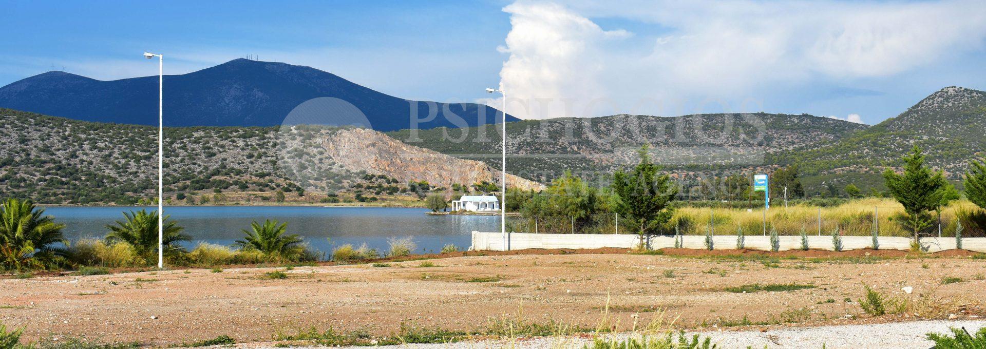 for_sale_plot_5000_square_meters_sea_view_koilada_greece (8)