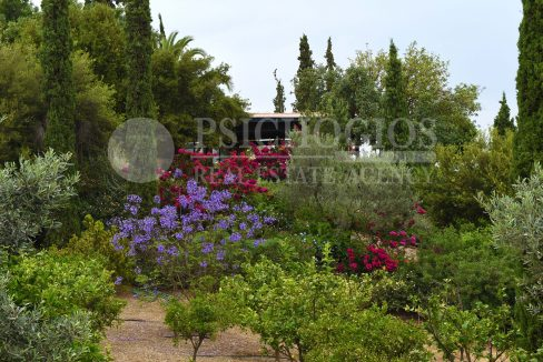 for_rent_house_600_square_meters_sea_view_porto_heli_greece (72)