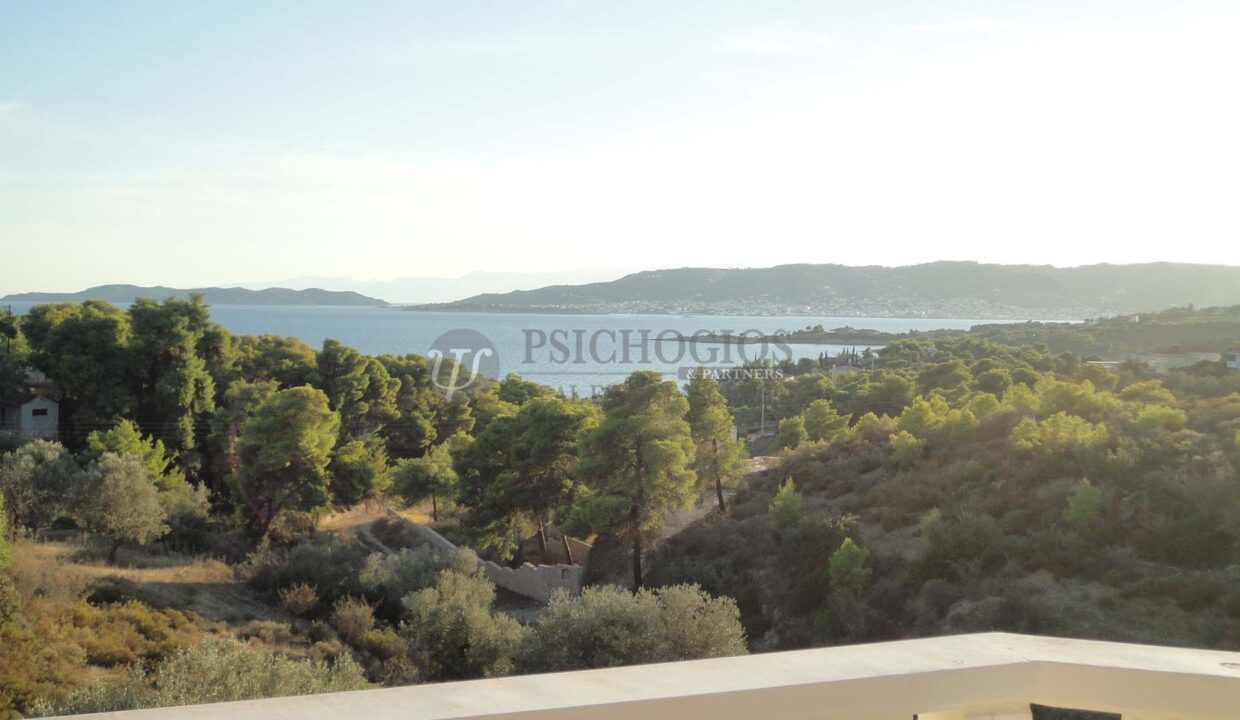 for_sale_house_120_square_meters_3_bedrooms_amazing_view_Agios_Amilianos_Greece (11)