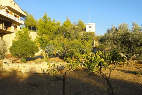 for_sale_house_120_square_meters_3_bedrooms_amazing_view_Agios_Amilianos_Greece (27)