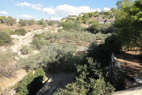 for_sale_house_120_square_meters_3_bedrooms_amazing_view_Agios_Amilianos_Greece (43)