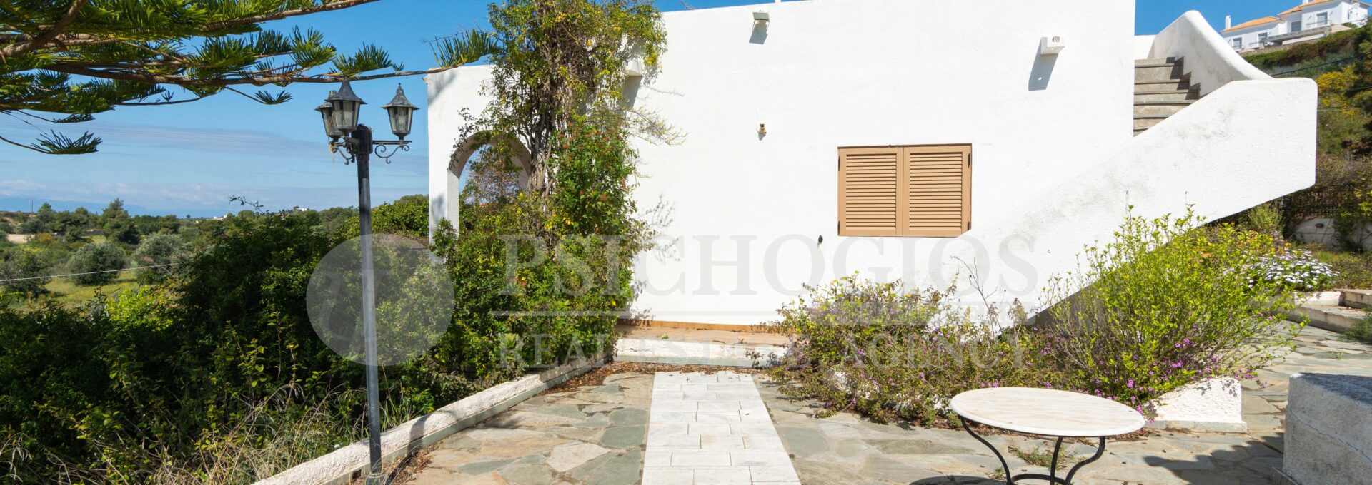 for_sale_house_160_square_meters_plot_1000_sq.m_agios_aimilianos_greece (22)