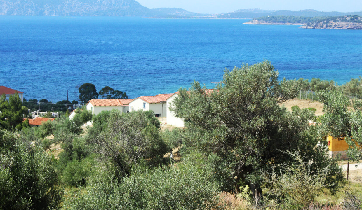 for_sale_plot_14000_square_meters_swimming_pool_near_the_beach_Ermioni_Greece (7)