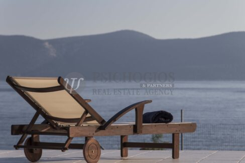 for_sale_villa_5000_square_meters_sqimming_pool_next_to_the_sea_Ermioni_Greece (101)