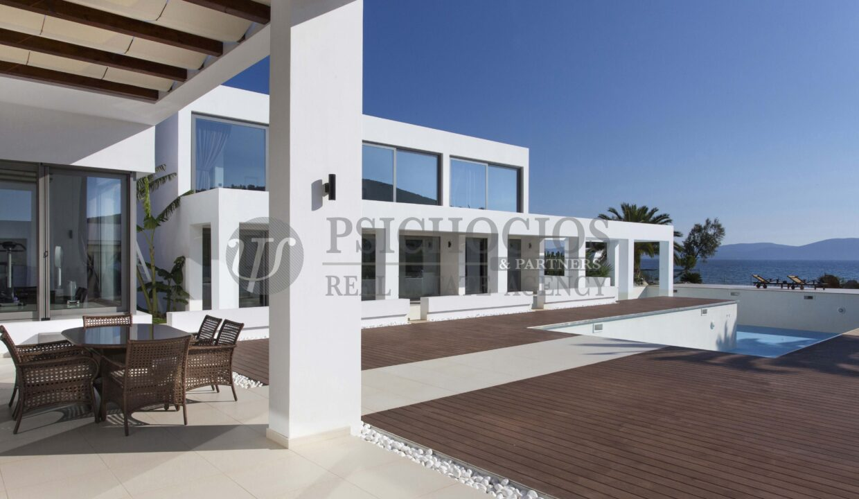 for_sale_villa_5000_square_meters_sqimming_pool_next_to_the_sea_Ermioni_Greece (126)
