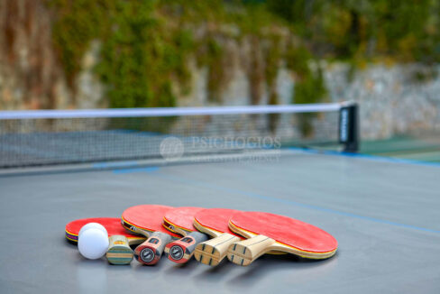 Amenities - Table tennis