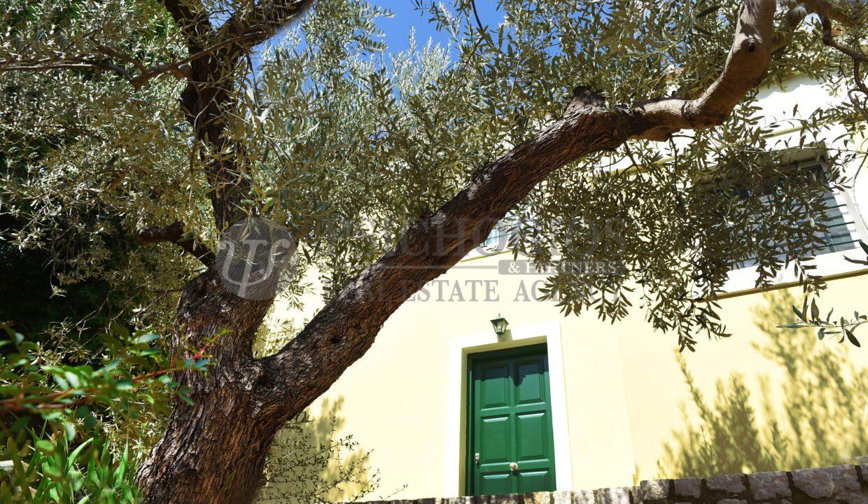 for_rent_villa_400_square_meters_8_bedrooms_amazing_sea_view_Koilada_Greece (7)