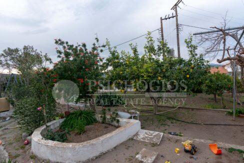 for_sale_two_houses_plot_2000_sq.m._view_ermioni_greece 1 (20)