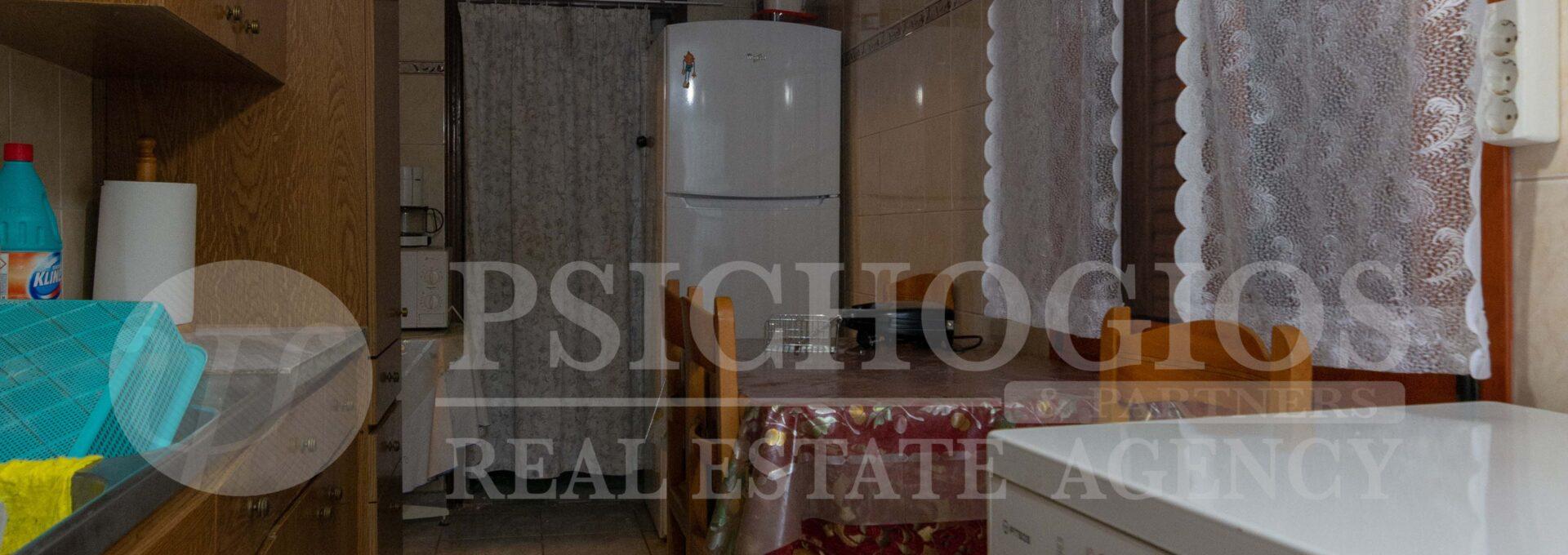 for_sale_two_houses_plot_2000_sq.m._view_ermioni_greece 1 (32)