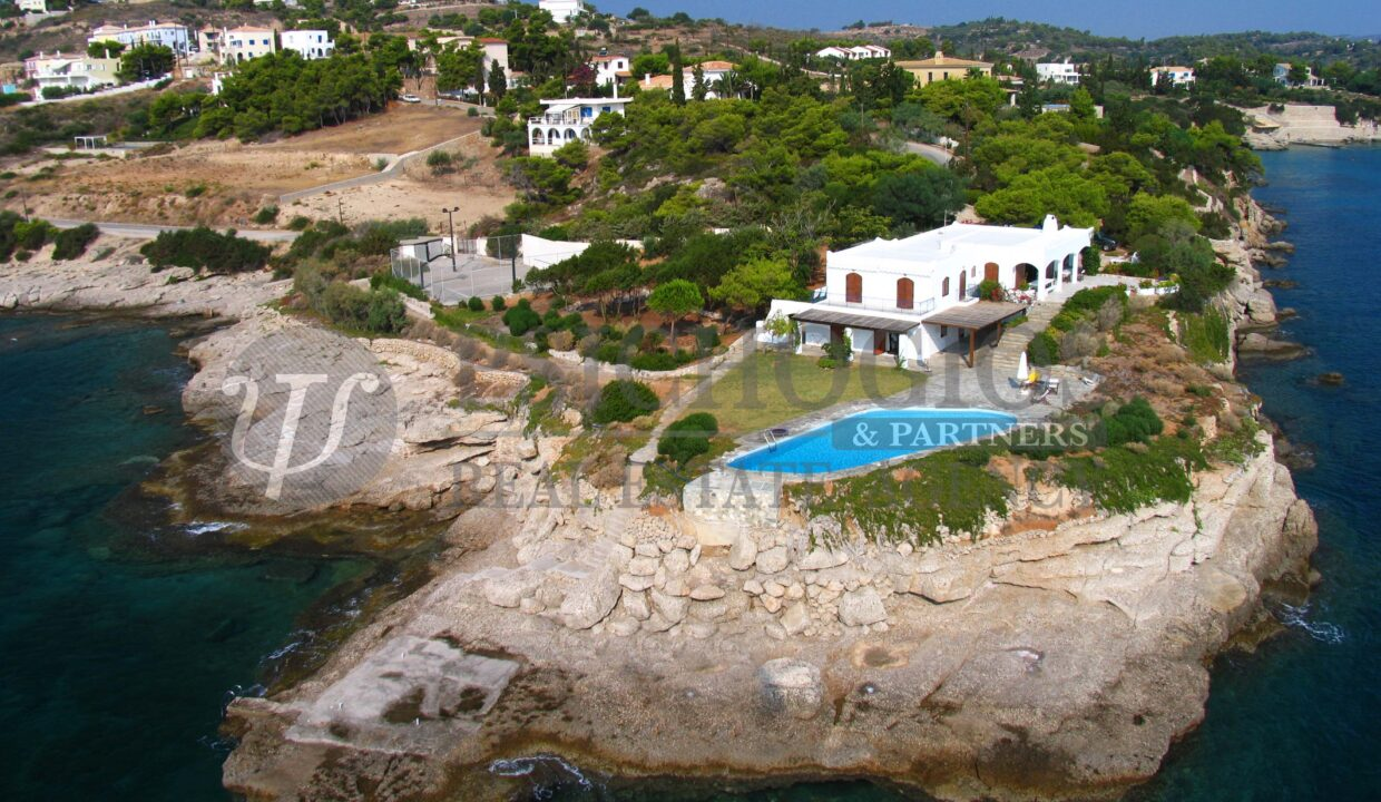 for_sale_plot_5000_square_meters_Agios_Amilianos_Greece (6)